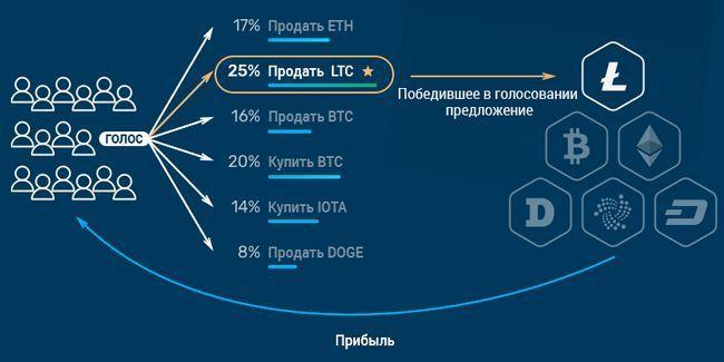 Обзор ico crowdwiz — децентрализованная платформа для инвеститоров