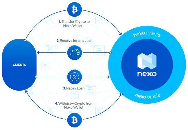 Обзор ico nexo — пять причин почему стоит инвестировать в токены платформы