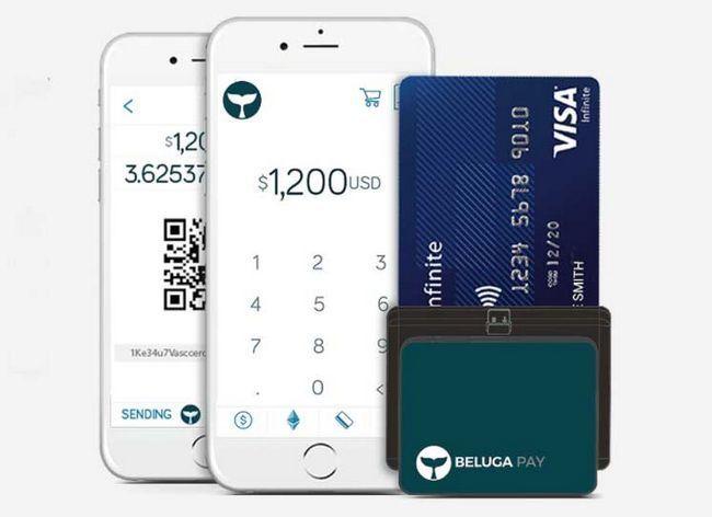 Обзор проекта beluga pay — первое ico с сертификатами visa и mastercard